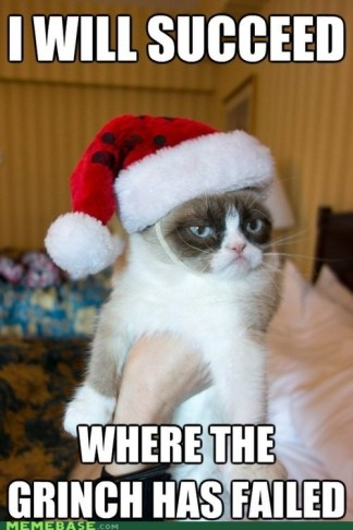 Christmas Grumpy Cat 3