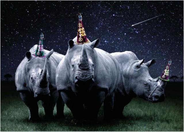 New Year's Rhinos