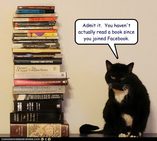 Book or Facebook Kitty