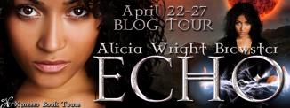 Echo Tour Banner
