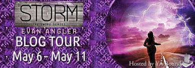 Storm Tour Banner