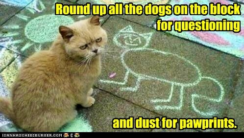 Kitty Chalk Outline