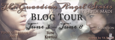 The Guardian Angel Series Tour Banner