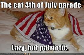 Fourth of July Kitty 2