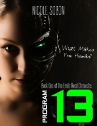 Program 13