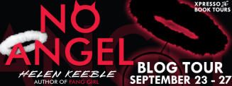 No Angel Tour Banner