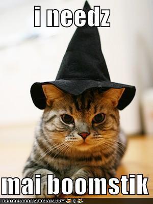 Halloween Witch Kitty