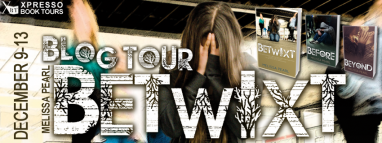 Betwixt Tour Banner