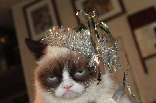 New Year's Grumpy Cat