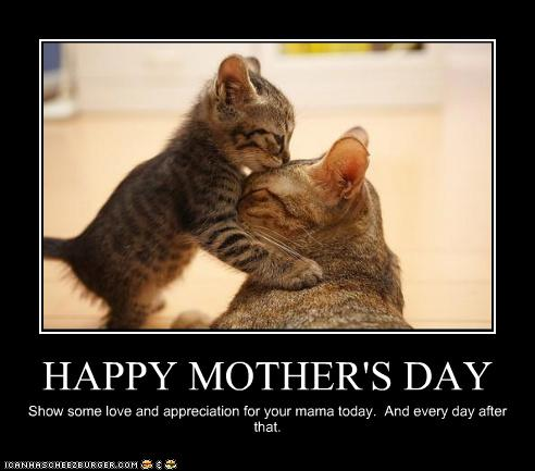 Mother's Day Kitties 4