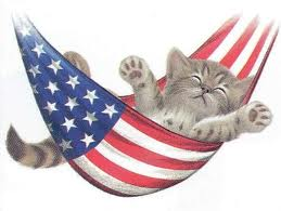 Fourth of July Kitty