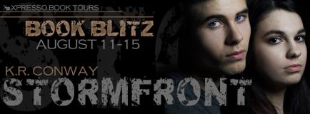 Stormfront Blitz Banner