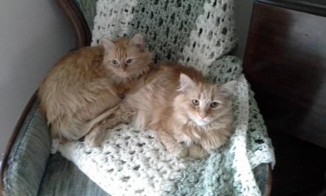 Vivian & Giselle, February 2014