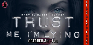 Trust Me, I'm Lying Tour Banner