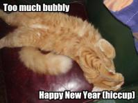 New Year's Kitty 12
