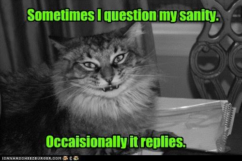 Sanity Kitty