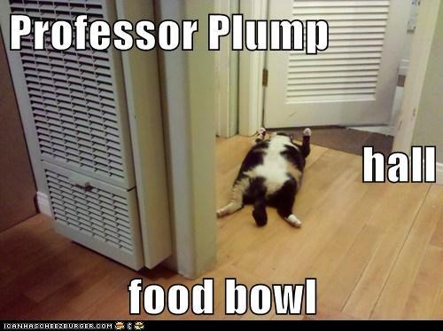 Professor Plump Kitty Murder