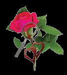 Lauren Carr Thorny Rose Mysteries Logo