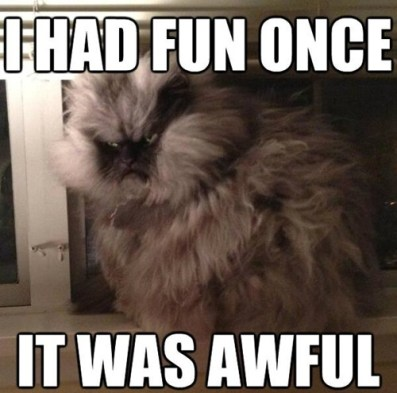 Fun Was Awful Kitty