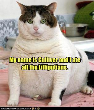 Gulliver Kitty