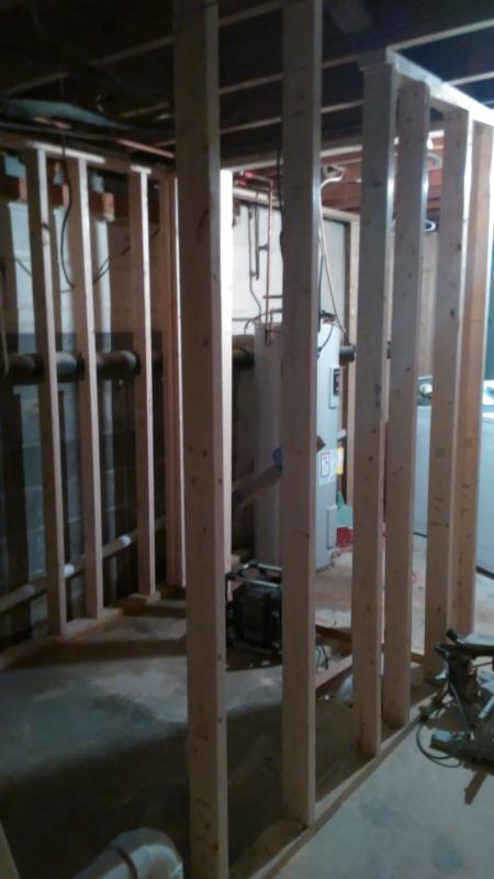 Renovations Bathroom Frame Week 2