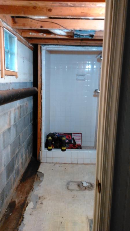 Renovations Bathroom Tearout