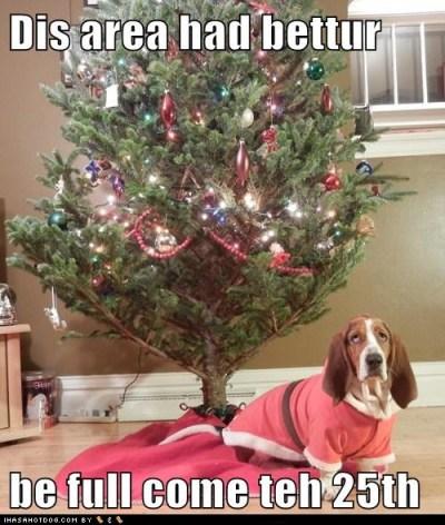 christmas-doggie-3