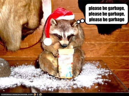 christmas-raccoon