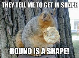 round-squirrel