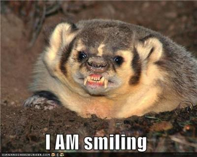 smiling-badger