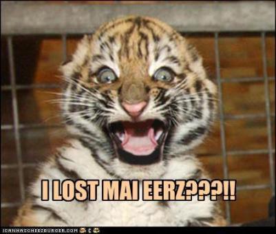 tiger-cub-lost-ears