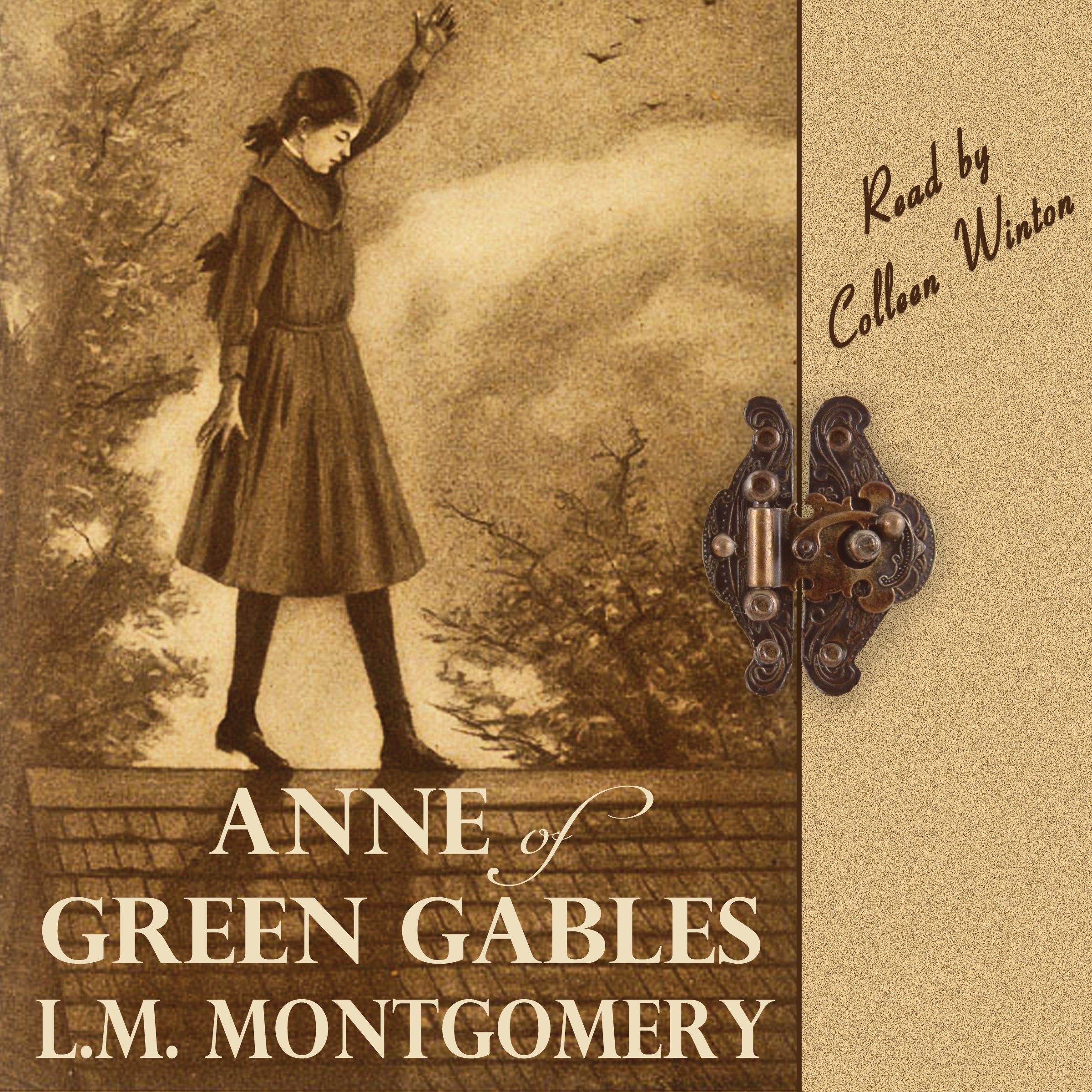 book report anne of green Anne of green gables is the first and most popular novel in a nine book series written by canadian author lm montgomery (also known as lucy maud montgomery.